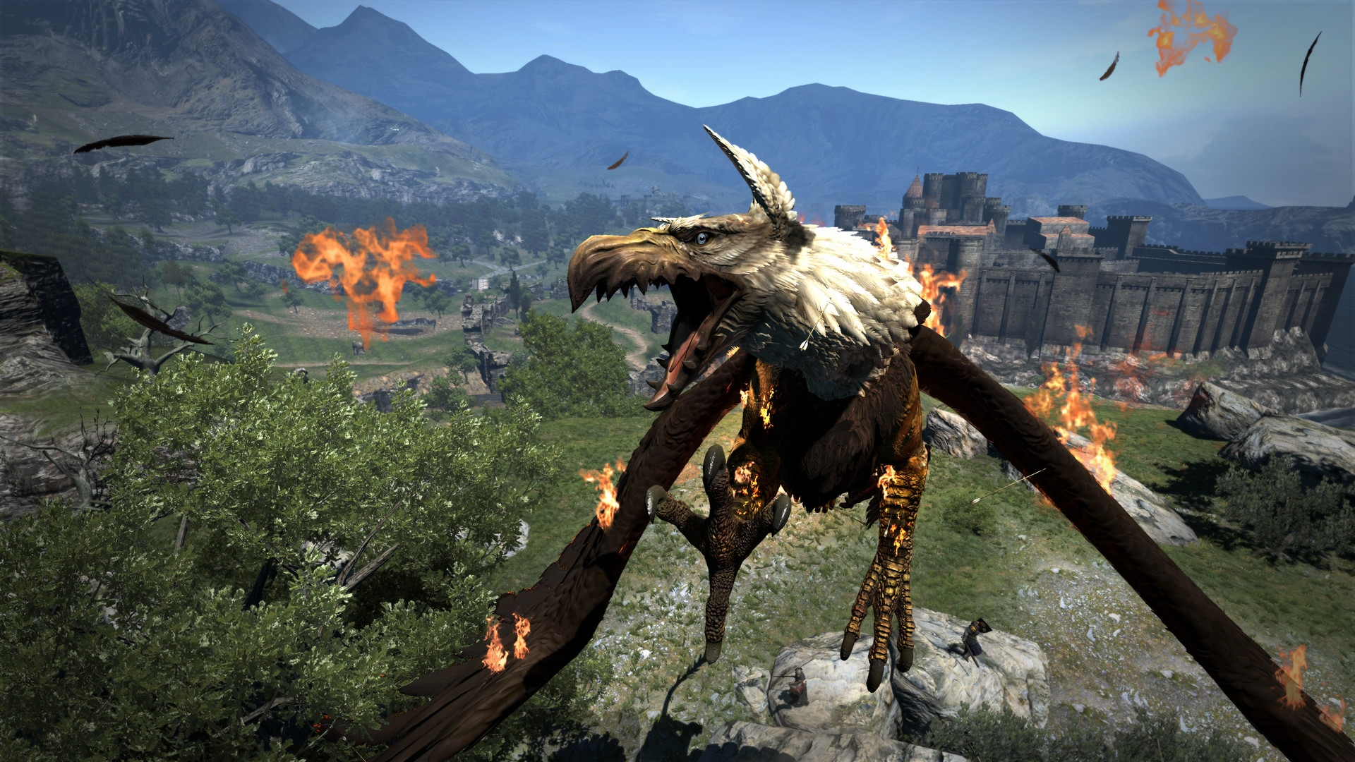 Dragon's Dogma: Dark Arisen выйдет на Xbox One и PlayStation 4